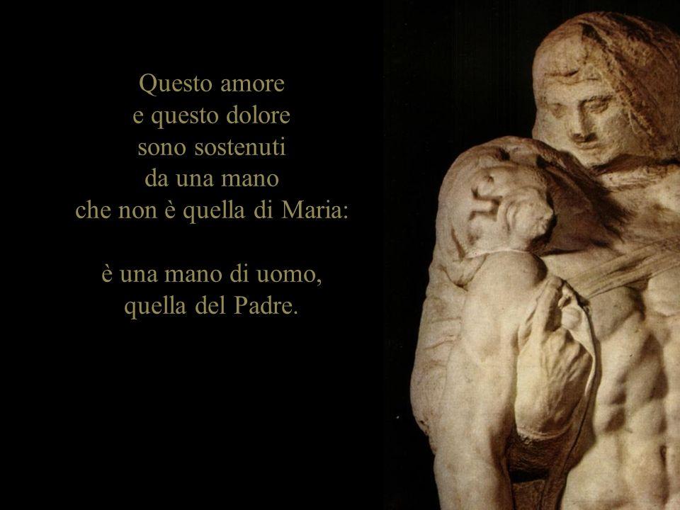 Questo amore e questo dolore sono sostenuti da una mano che non è quella di Maria: è una mano di uomo, quella del Padre.
