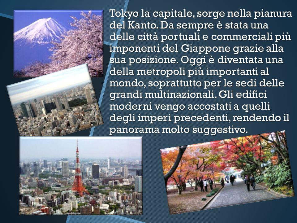 Tokyo la capitale, sorge nella pianura del Kanto. Da sempre è stata una delle città portuali e commerciali più imponenti del Giappone grazie alla sua
