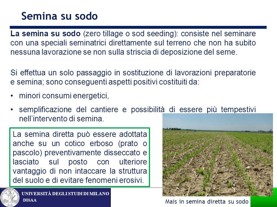 DISAA UNIVERSITÀ DEGLI STUDI DI MILANO La semina su sodo (zero tillage o sod seeding): consiste nel seminare con una speciali seminatrici direttamente