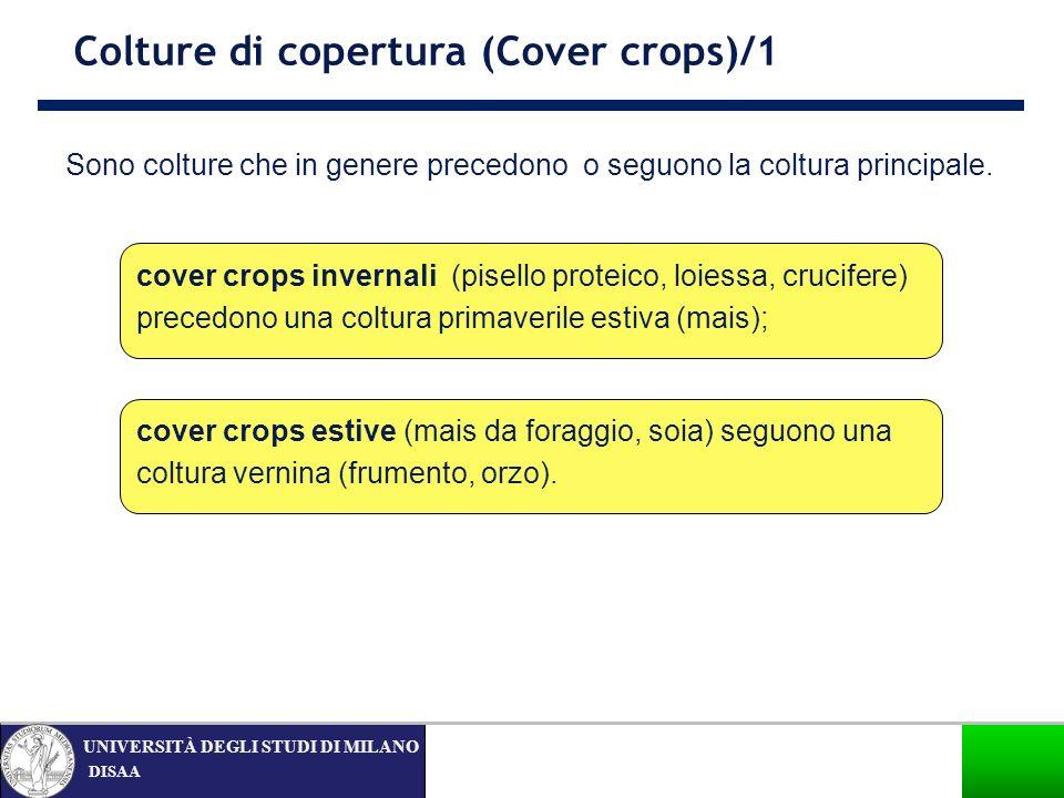 DISAA UNIVERSITÀ DEGLI STUDI DI MILANO Sono colture che in genere precedono o seguono la coltura principale. Colture di copertura (Cover crops)/1 cove
