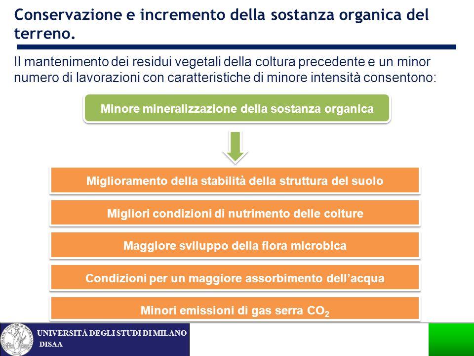 DISAA UNIVERSITÀ DEGLI STUDI DI MILANO Conservazione e incremento della sostanza organica del terreno. Minore mineralizzazione della sostanza organica