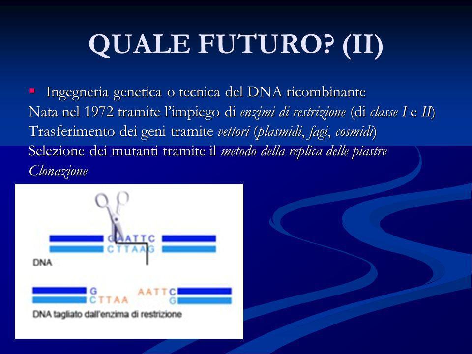 QUALE FUTURO? (II) Ingegneria genetica o tecnica del DNA ricombinante Ingegneria genetica o tecnica del DNA ricombinante Nata nel 1972 tramite limpieg