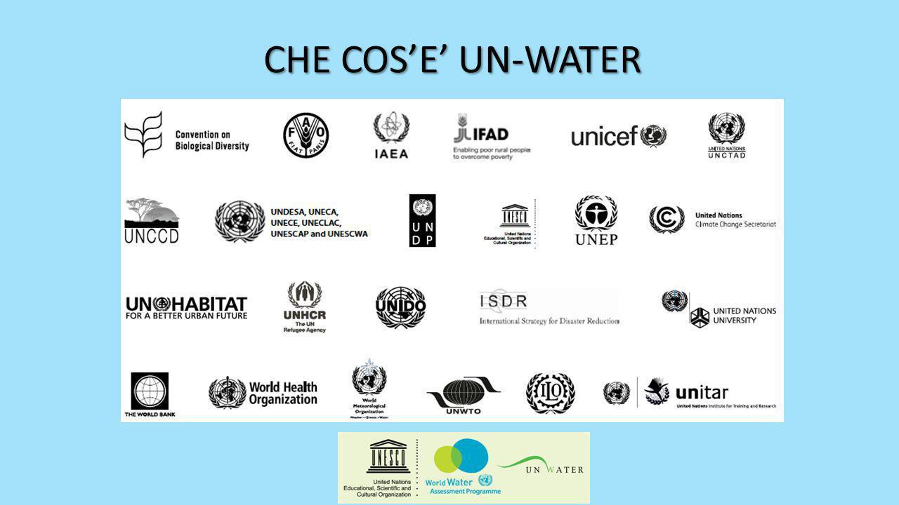 Nel Dicembre 2010 lAssemblea Generale Delle Nazioni Unite ha dichiarato il 2013 lAnno Internazionale della Cooperazione Idrica (Risoluzione A/RES/65/154).