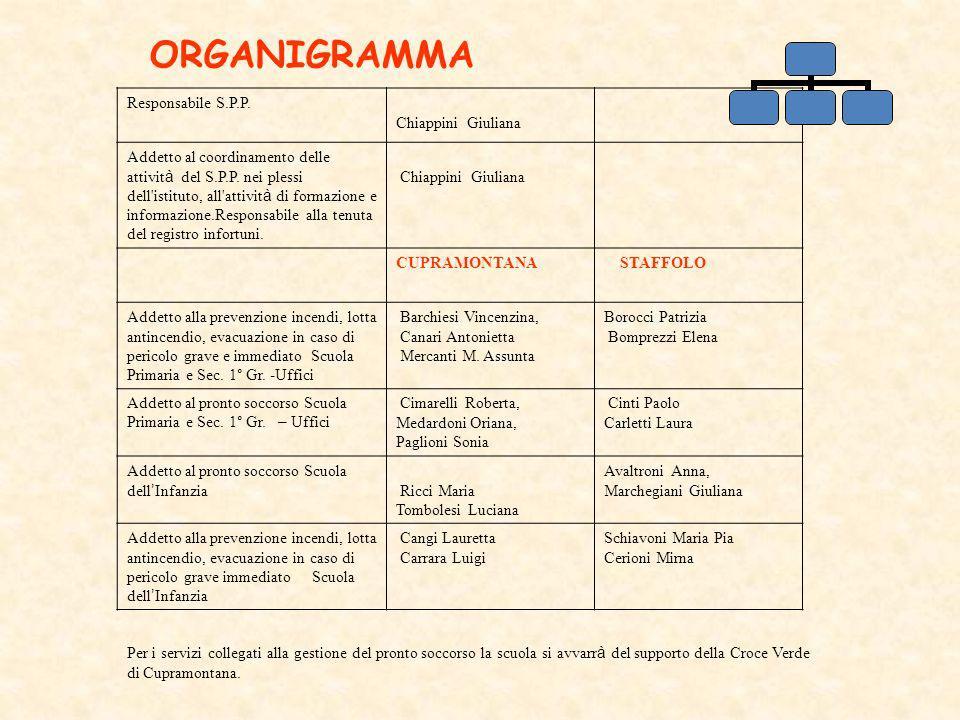 ORGANIGRAMMA Responsabile S.P.P. Chiappini Giuliana Addetto al coordinamento delle attivit à del S.P.P. nei plessi dell'istituto, all'attivit à di for