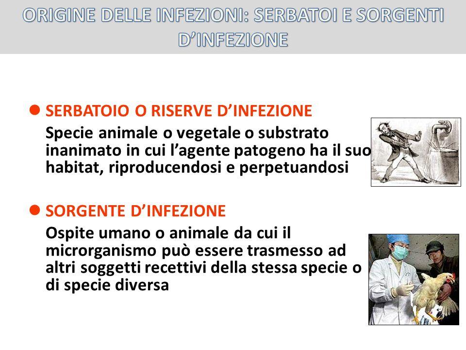 SERBATOIO O RISERVE DINFEZIONE Specie animale o vegetale o substrato inanimato in cui lagente patogeno ha il suo habitat, riproducendosi e perpetuando