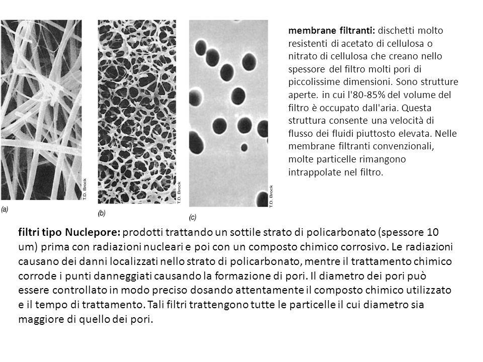 filtri tipo Nuclepore: prodotti trattando un sottile strato di policarbonato (spessore 10 um) prima con radiazioni nucleari e poi con un composto chim