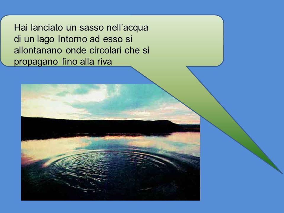 Hai lanciato un sasso nellacqua di un lago Intorno ad esso si allontanano onde circolari che si propagano fino alla riva