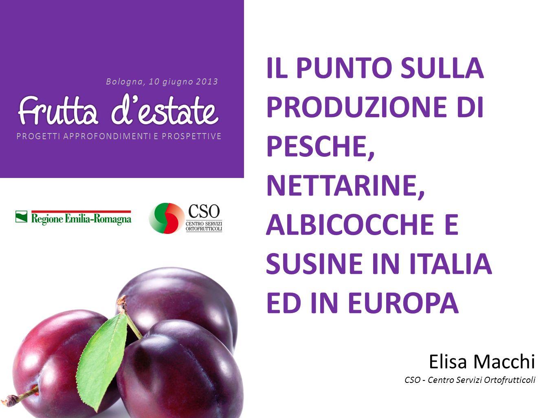 PROGETTI APPROFONDIMENTI E PROSPETTIVE Bologna, 10 giugno 2013 grazie per lattenzione www.csoservizi.com Elisa Macchi CSO - Centro Servizi Ortofrutticoli