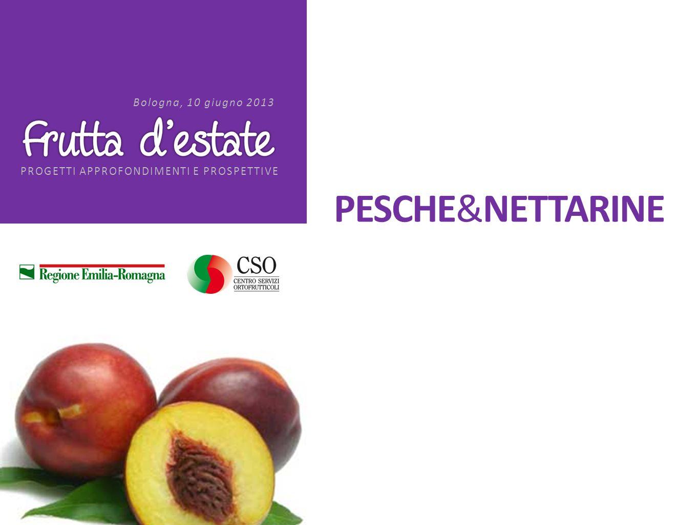 PROGETTI APPROFONDIMENTI E PROSPETTIVE Bologna, 10 giugno 2013 PESCHE&NETTARINE