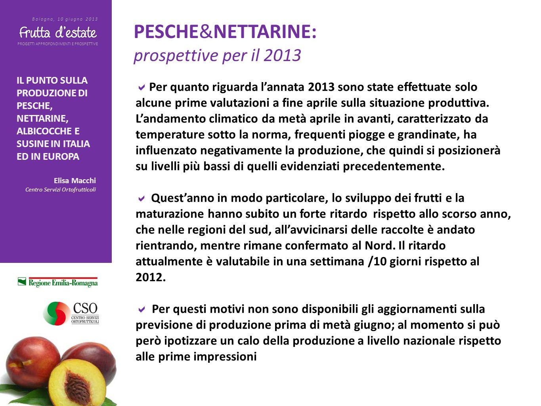 PROGETTI APPROFONDIMENTI E PROSPETTIVE Bologna, 10 giugno 2013 IL PUNTO SULLA PRODUZIONE DI PESCHE, NETTARINE, ALBICOCCHE E SUSINE IN ITALIA ED IN EUR