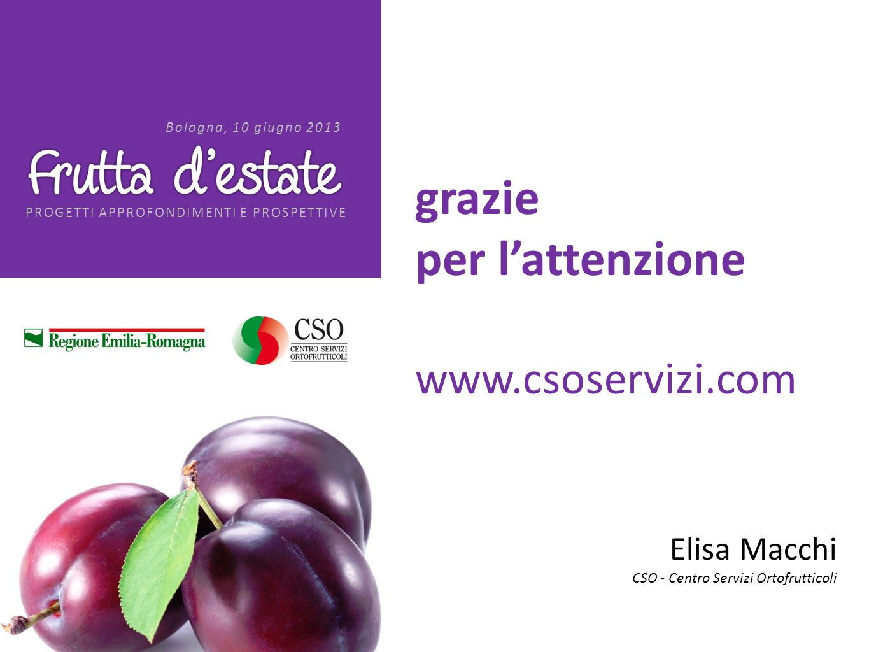 PROGETTI APPROFONDIMENTI E PROSPETTIVE Bologna, 10 giugno 2013 grazie per lattenzione www.csoservizi.com Elisa Macchi CSO - Centro Servizi Ortofruttic