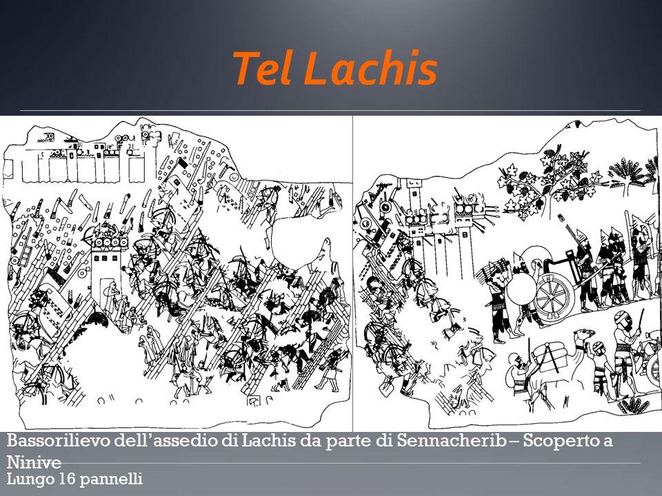 Tel Lachis Bassorilievo dellassedio di Lachis da parte di Sennacherib – Scoperto a Ninive Lungo 16 pannelli c