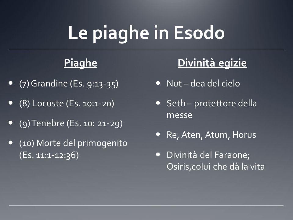 Le piaghe in Esodo Piaghe (7) Grandine (Es. 9:13-35) (8) Locuste (Es. 10:1-20) (9) Tenebre (Es. 10: 21-29) (10) Morte del primogenito (Es. 11:1-12:36)