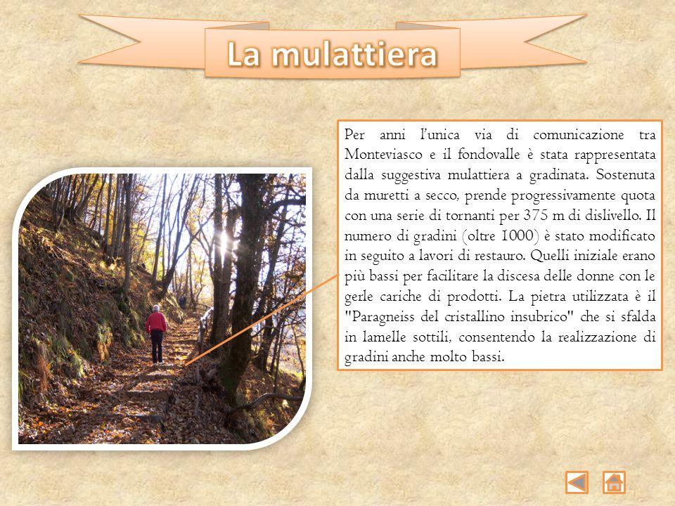 Per anni lunica via di comunicazione tra Monteviasco e il fondovalle è stata rappresentata dalla suggestiva mulattiera a gradinata. Sostenuta da muret