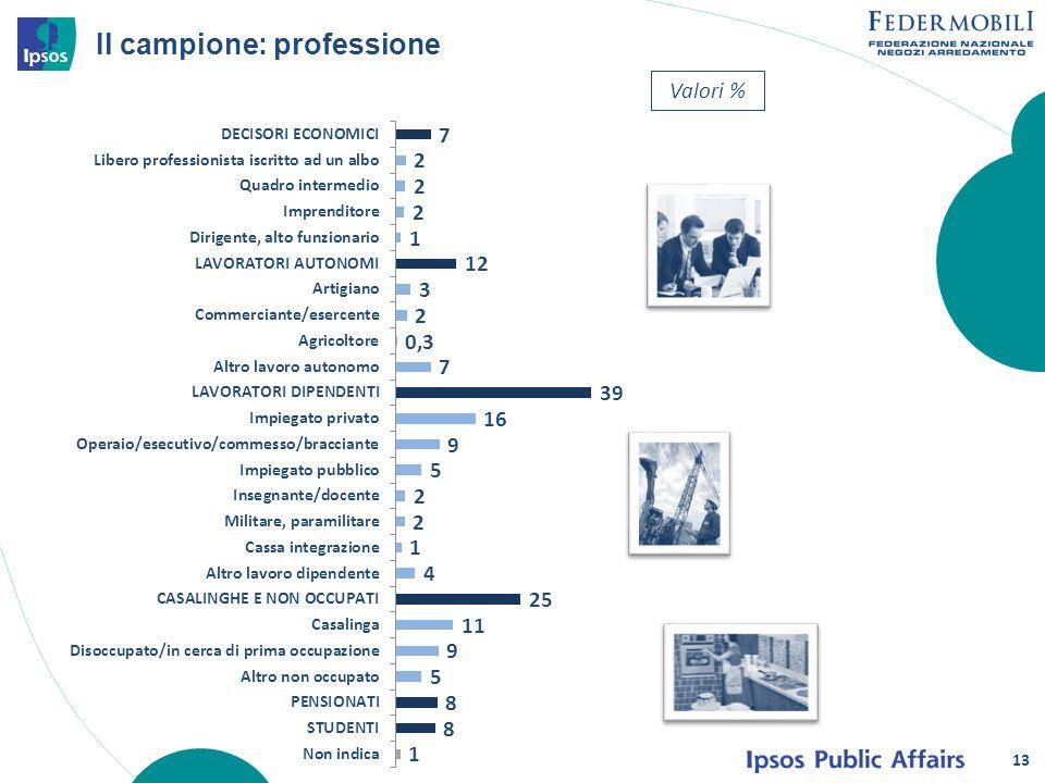 13 Il campione: professione Valori %