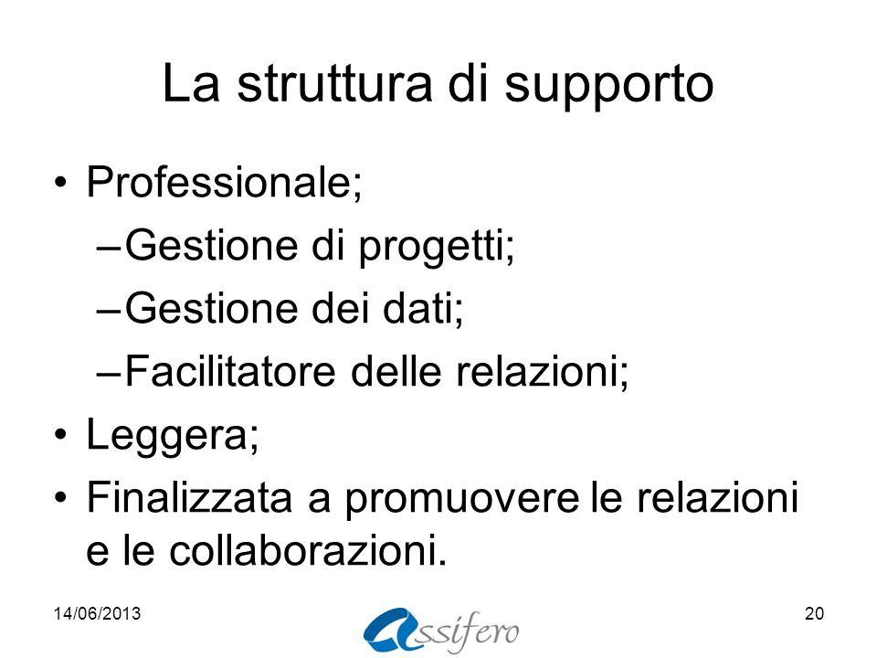 La struttura di supporto Professionale; –Gestione di progetti; –Gestione dei dati; –Facilitatore delle relazioni; Leggera; Finalizzata a promuovere le