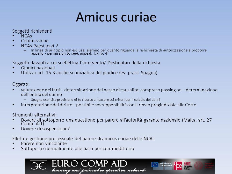 Amicus curiae Soggetti richiedenti NCAs Commissione NCAs Paesi terzi .