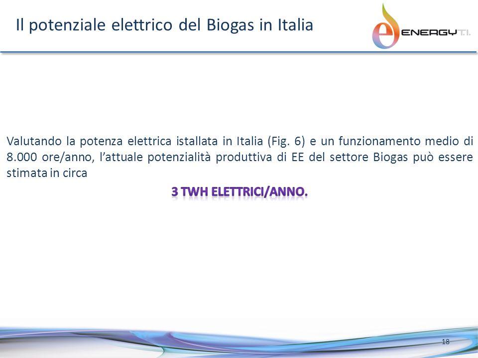 Il potenziale elettrico del Biogas in Italia 18
