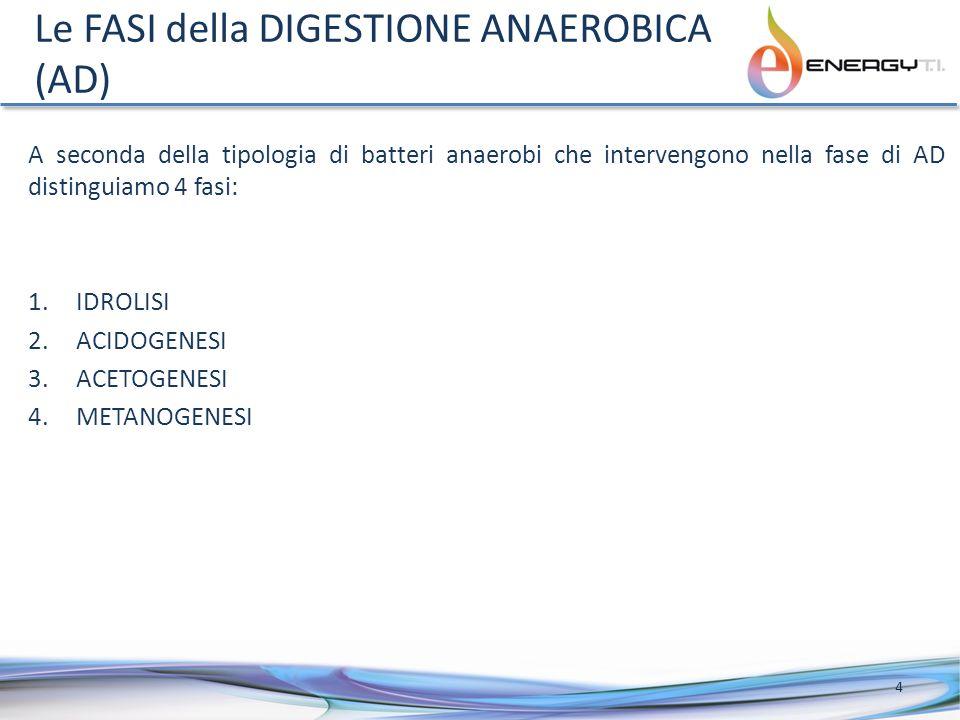 Le FASI della DIGESTIONE ANAEROBICA (AD) A seconda della tipologia di batteri anaerobi che intervengono nella fase di AD distinguiamo 4 fasi: 1.IDROLISI 2.ACIDOGENESI 3.ACETOGENESI 4.METANOGENESI 4