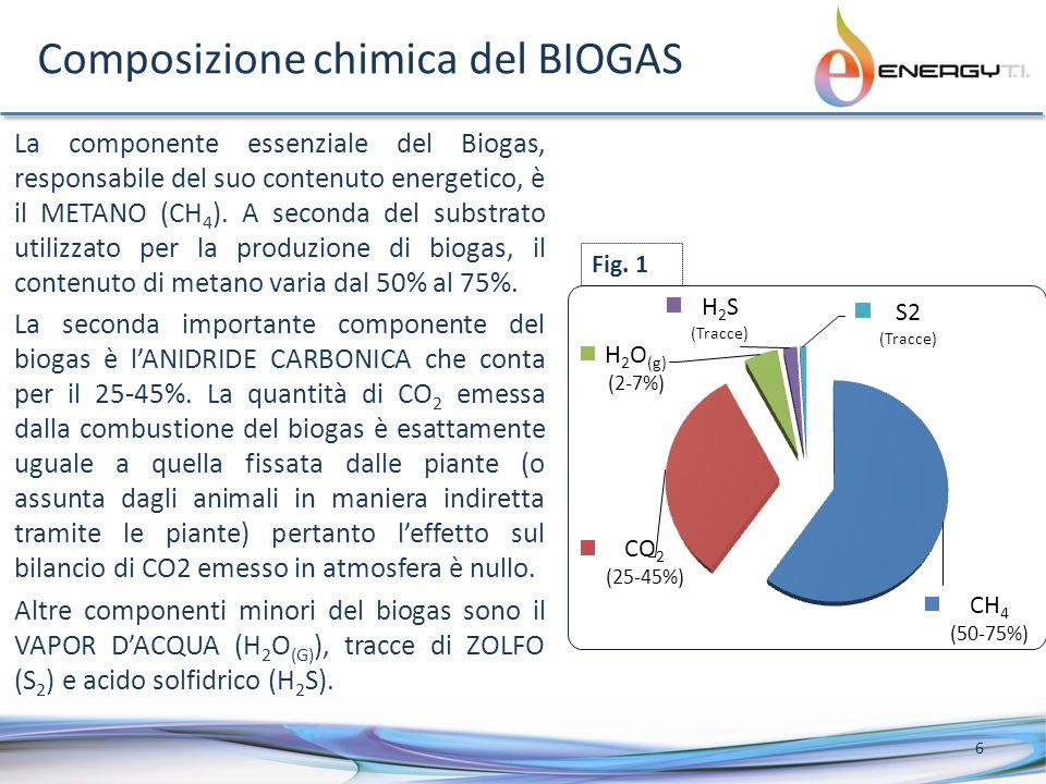 Composizione chimica del BIOGAS La componente essenziale del Biogas, responsabile del suo contenuto energetico, è il METANO (CH 4 ).