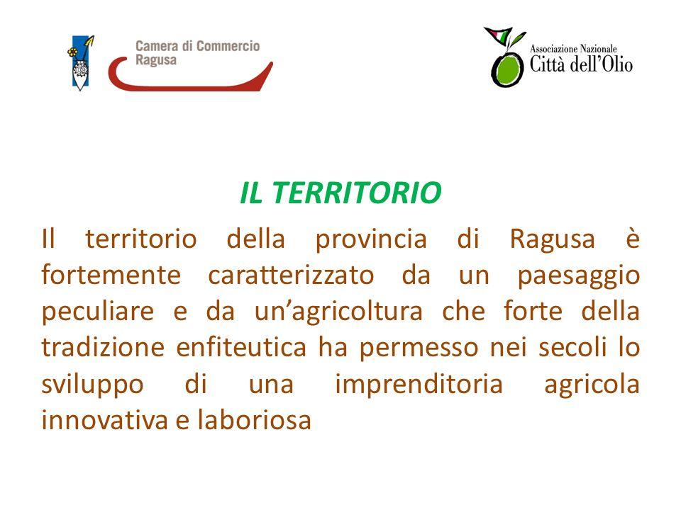 IL TERRITORIO Il territorio della provincia di Ragusa è fortemente caratterizzato da un paesaggio peculiare e da unagricoltura che forte della tradizione enfiteutica ha permesso nei secoli lo sviluppo di una imprenditoria agricola innovativa e laboriosa