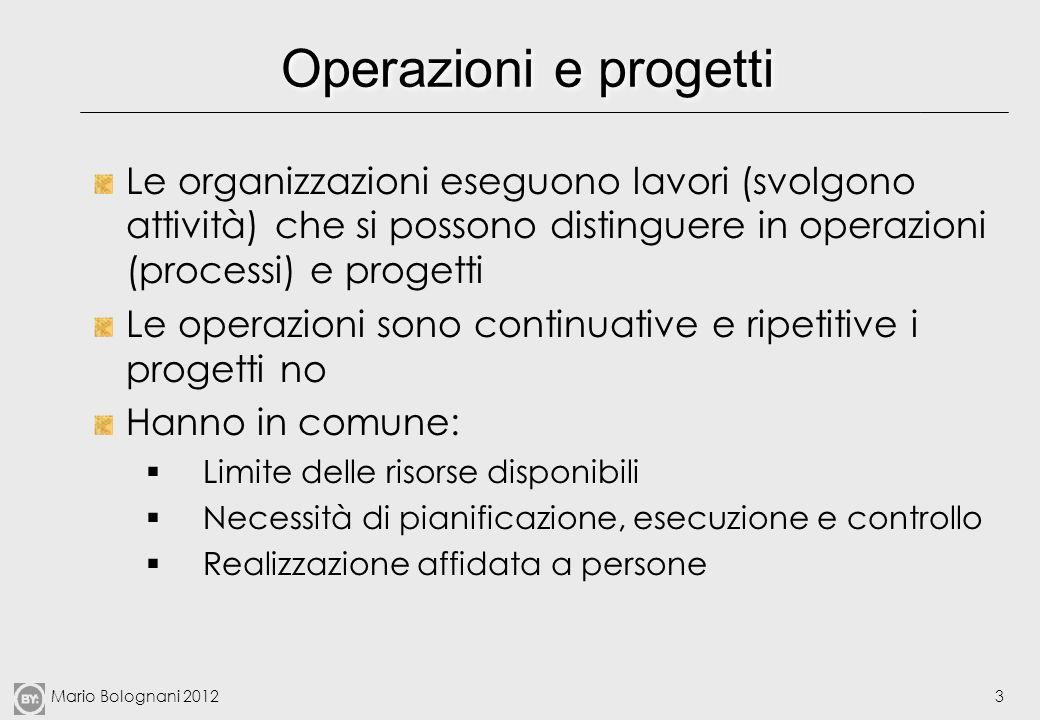 Mario Bolognani 20123 Operazioni e progetti Le organizzazioni eseguono lavori (svolgono attività) che si possono distinguere in operazioni (processi)