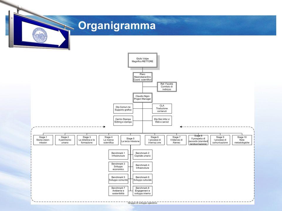 I diversi stages Stage 1 – Storia-vision-mission Stage 2 – Il patrimonio umano Stage 3 – La didattica e la formazione Stage 4 – La ricerca scientifica Stage 5 – La terza missione Stage 6 – I processi di internazionalizzazione Stage 7 – Il bilancio di Ateneo Stage 8 – Il prospetto di raccordo (standard rendicontazione) Stage 9 – I processi di comunicazione Stage 10 – Note metodologiche Vanno evidenziati metodi, tecniche e strumenti di analisi dei dati primari, nonché, le fonti dalle quali sono stati tratti i dati secondari.