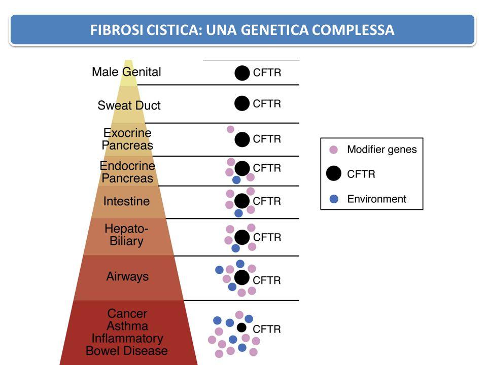 Fibrosi Cistica: Genetica complessa FIBROSI CISTICA: UNA GENETICA COMPLESSA