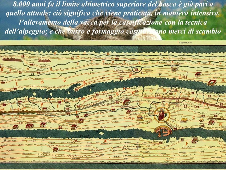 Michela Zucca Servizi culturali 8.000 anni fa il limite altimetrico superiore del bosco è già pari a quello attuale: ciò significa che viene praticata