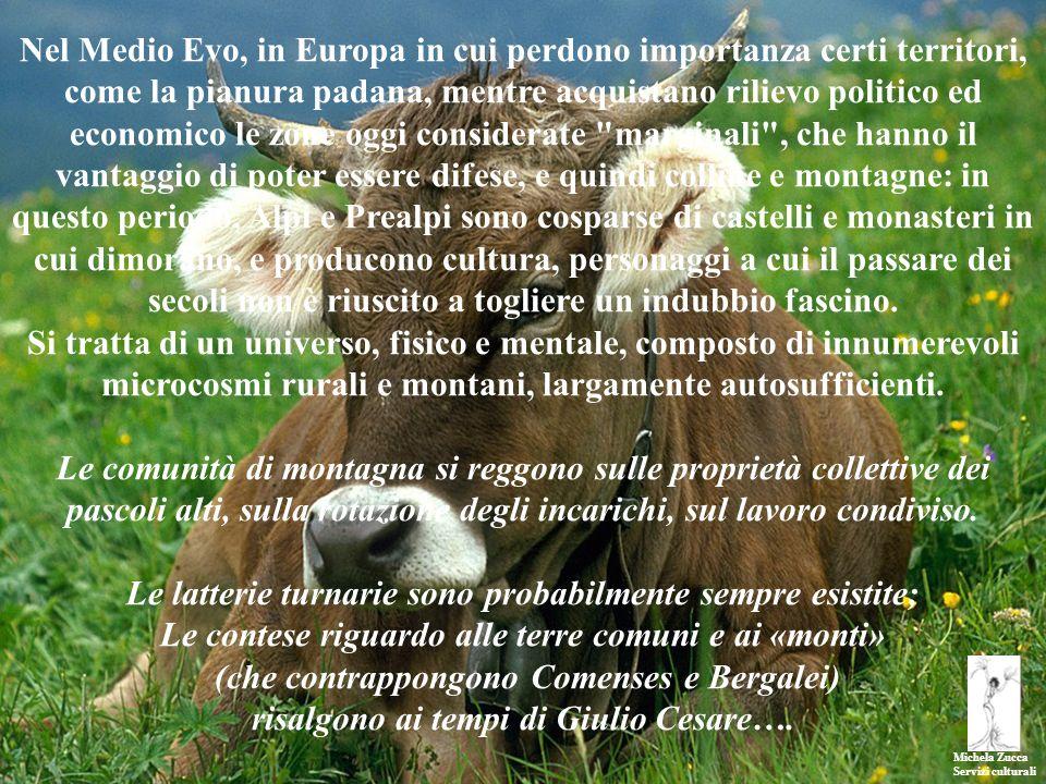 Michela Zucca Servizi culturali Nel Medio Evo, in Europa in cui perdono importanza certi territori, come la pianura padana, mentre acquistano rilievo