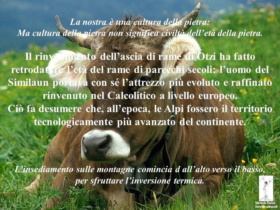 Michela Zucca Servizi culturali La nostra è una cultura della pietra: Ma cultura della pietra non significa civiltà delletà della pietra. Il rinvenime
