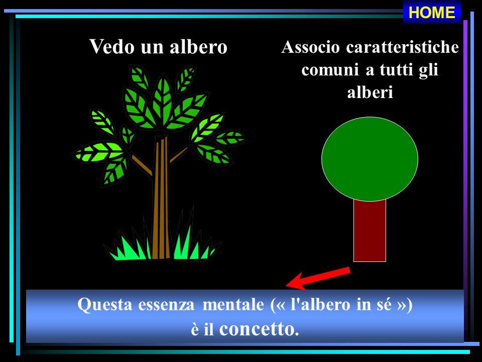 Vedo un albero Associo caratteristiche comuni a tutti gli alberi Questa essenza mentale (« l'albero in sé ») è il concetto. HOME