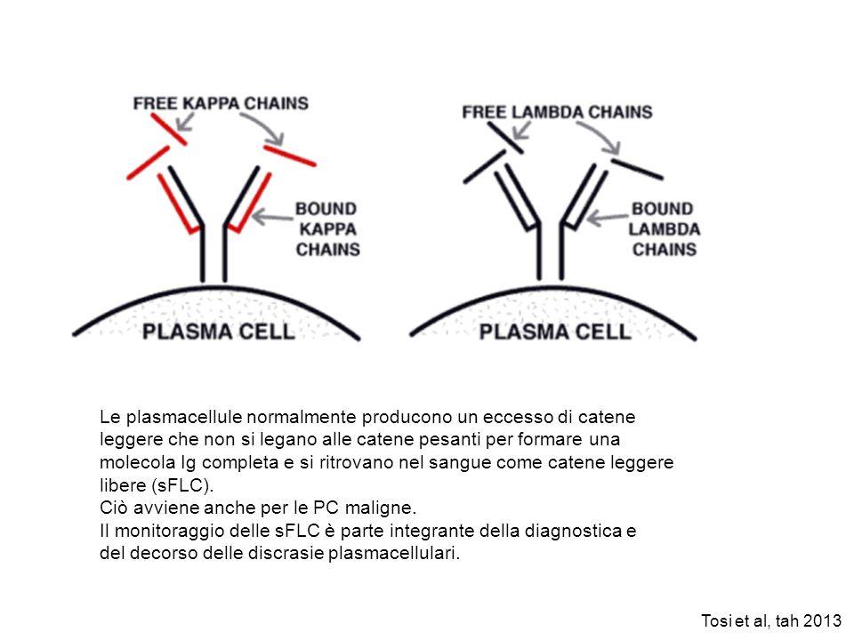 Le plasmacellule normalmente producono un eccesso di catene leggere che non si legano alle catene pesanti per formare una molecola Ig completa e si ri