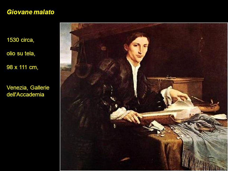 Giovane malato 1530 circa, olio su tela, 98 x 111 cm, Venezia, Gallerie dell'Accademia
