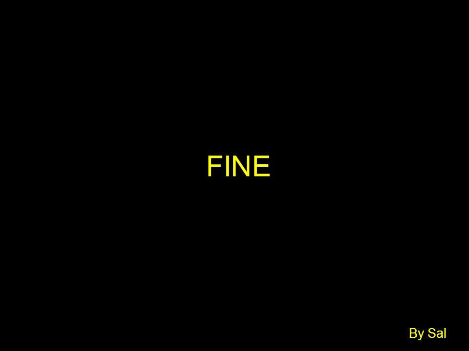 FINE By Sal