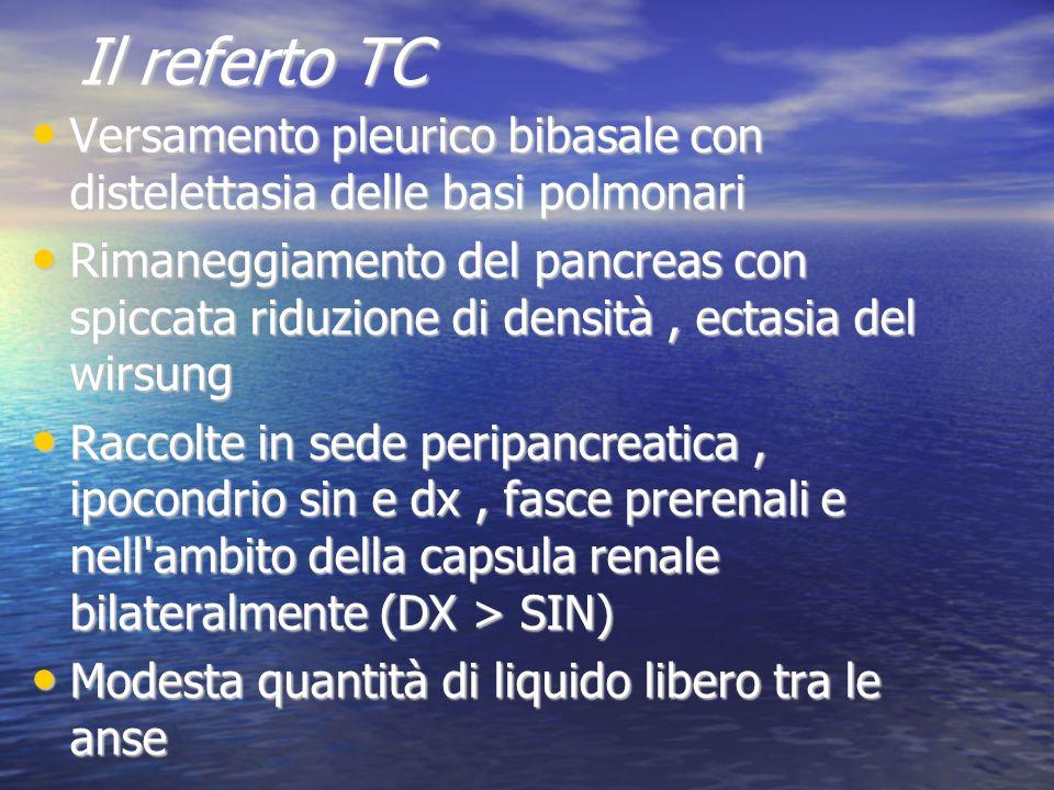 Il referto TC Versamento pleurico bibasale con distelettasia delle basi polmonari Versamento pleurico bibasale con distelettasia delle basi polmonari