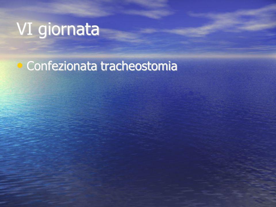 VI giornata Confezionata tracheostomia Confezionata tracheostomia