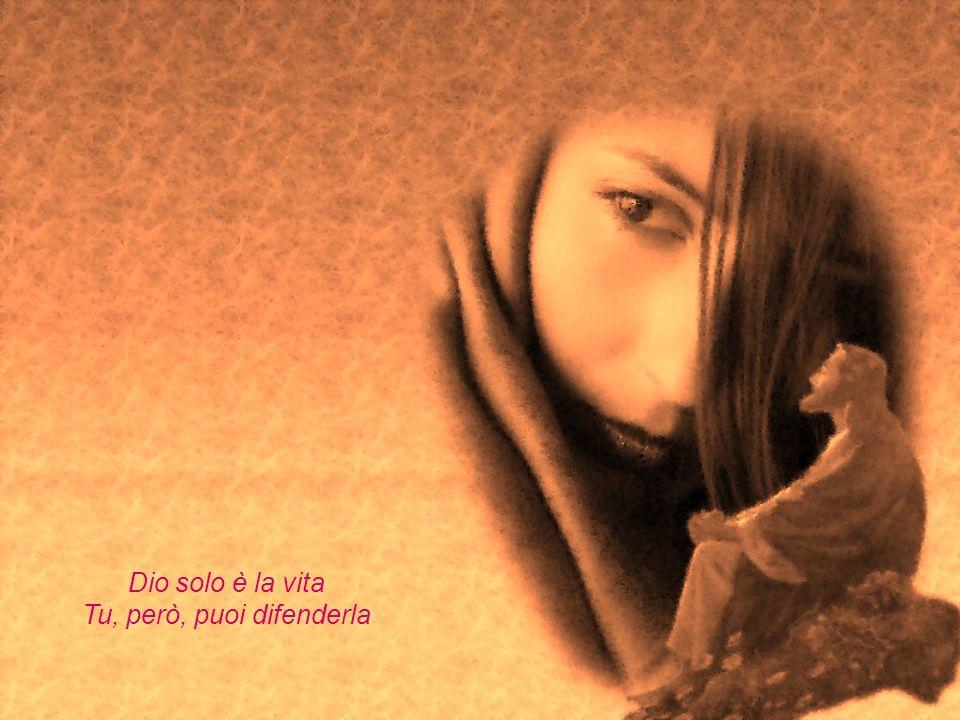 Dio solo è la vita Tu, però, puoi difenderla