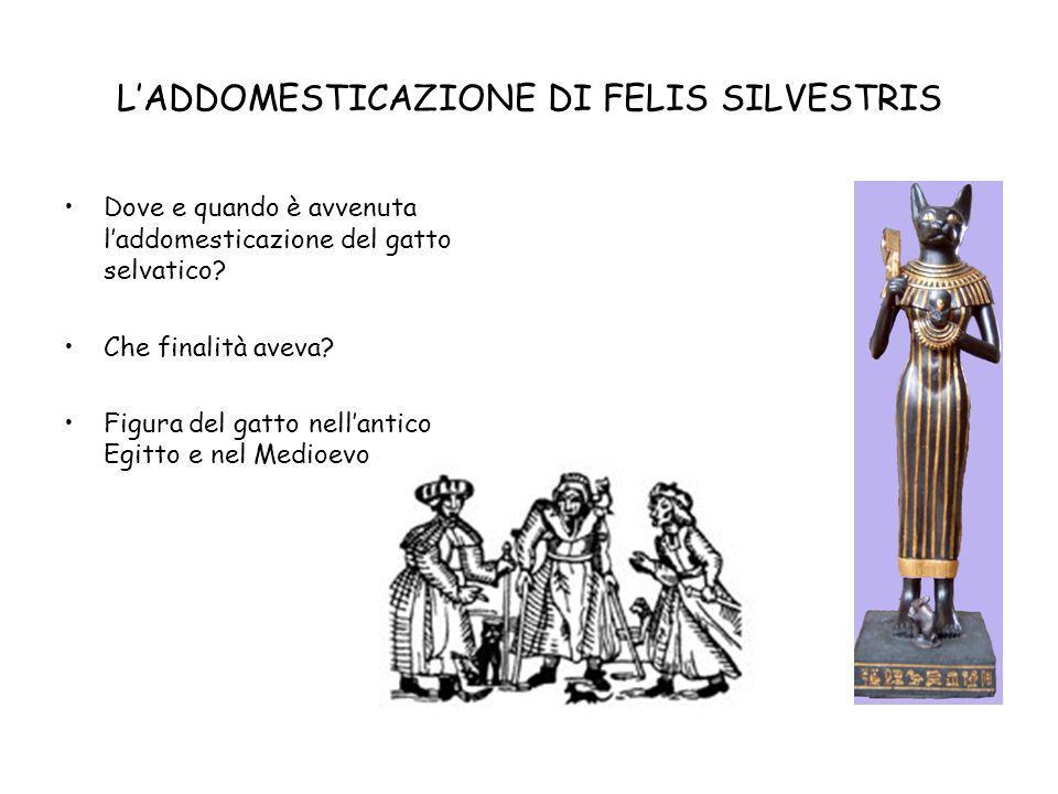 DISTRIBUZIONE IN ITALIA Distribuzione della specie in Italia.