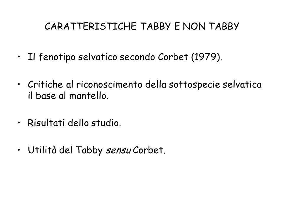 CARATTERISTICHE TABBY E NON TABBY Il fenotipo selvatico secondo Corbet (1979). Critiche al riconoscimento della sottospecie selvatica il base al mante