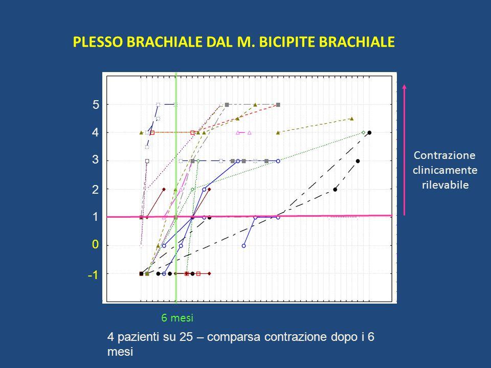 PLESSO BRACHIALE DAL M. BICIPITE BRACHIALE Contrazione clinicamente rilevabile 6 mesi 1 2 5 4 3 0 4 pazienti su 25 – comparsa contrazione dopo i 6 mes