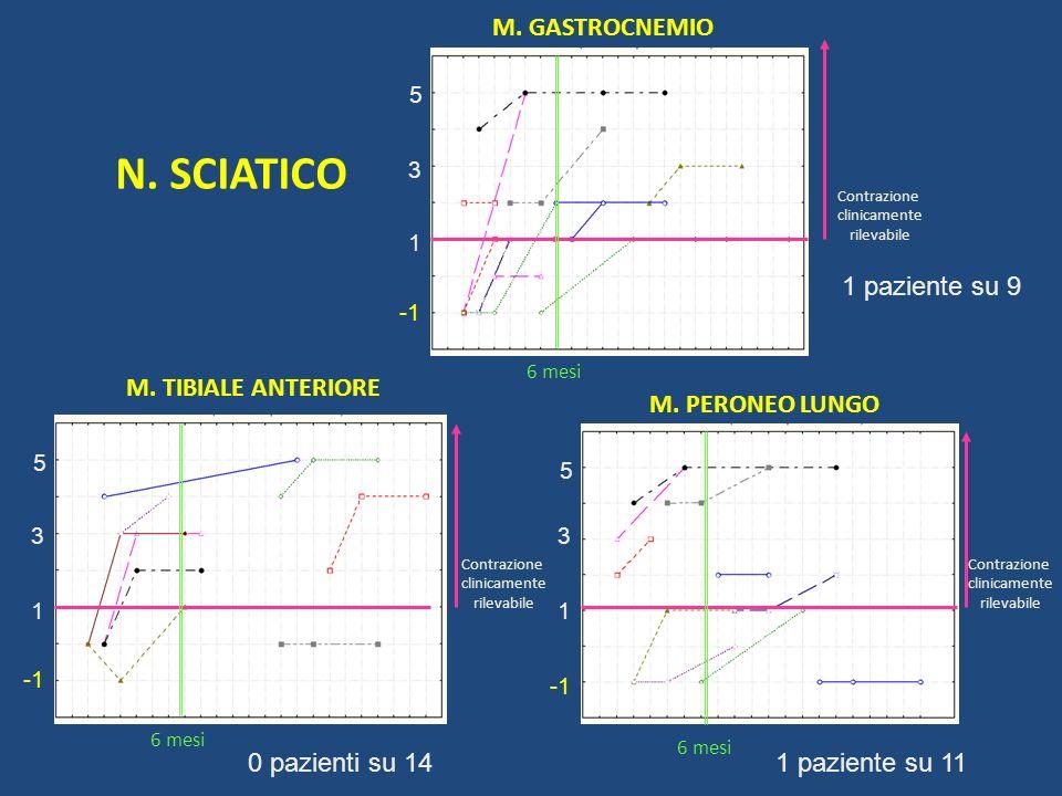 N. SCIATICO M. TIBIALE ANTERIORE M. PERONEO LUNGO M. GASTROCNEMIO 1 5 3 Contrazione clinicamente rilevabile 6 mesi 1 5 3 Contrazione clinicamente rile