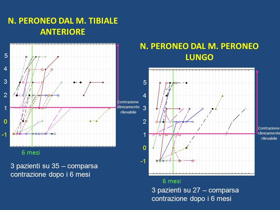 N. PERONEO DAL M. TIBIALE ANTERIORE N. PERONEO DAL M. PERONEO LUNGO 1 2 5 4 3 0 1 2 5 4 3 0 Contrazione clinicamente rilevabile 6 mesi Contrazione cli
