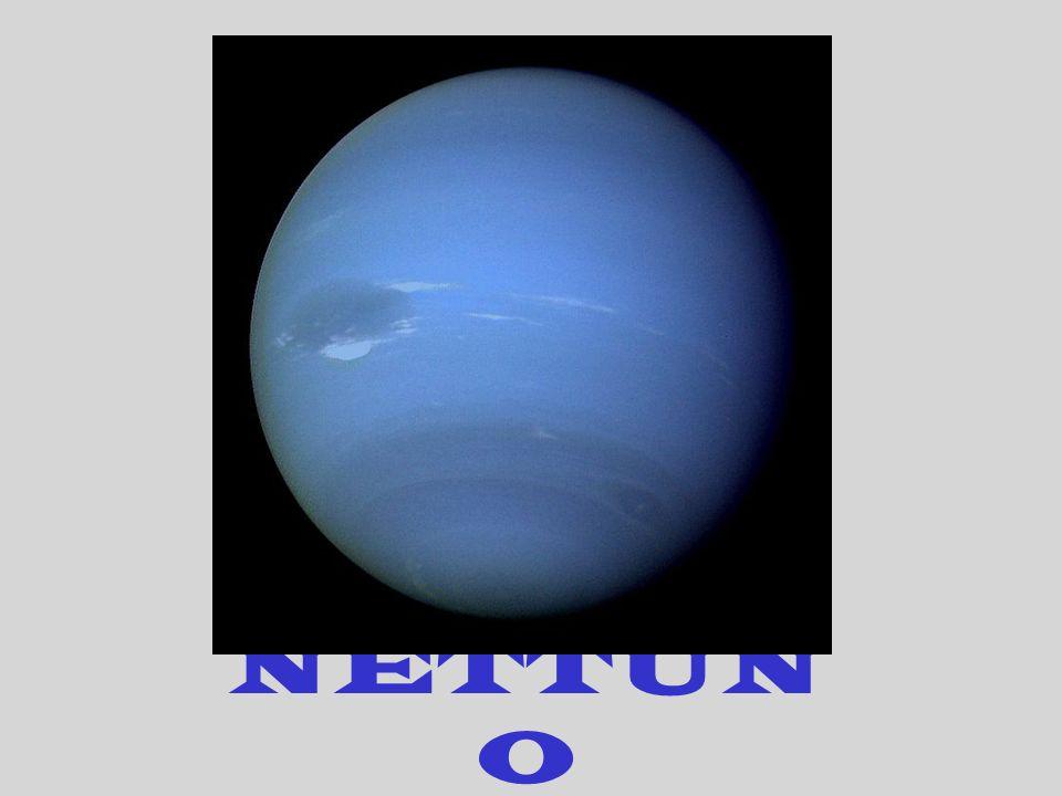 NETTUN O