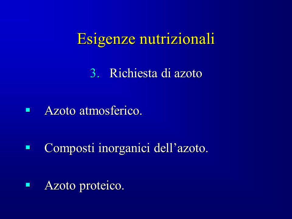 Esigenze nutrizionali 3.Richiesta di azoto Azoto atmosferico. Azoto atmosferico. Composti inorganici dellazoto. Composti inorganici dellazoto. Azoto p