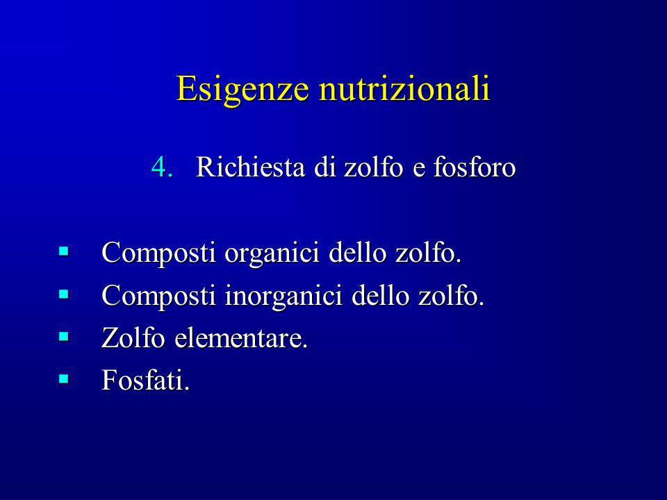 Esigenze nutrizionali 4.Richiesta di zolfo e fosforo Composti organici dello zolfo. Composti organici dello zolfo. Composti inorganici dello zolfo. Co