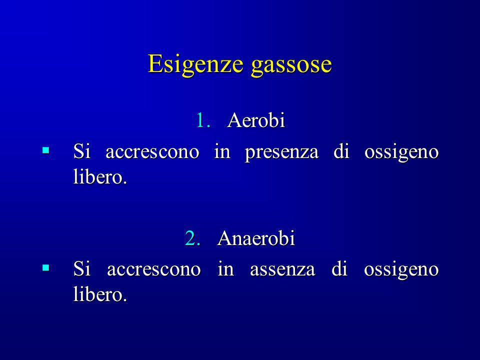 Esigenze gassose 1.Aerobi Si accrescono in presenza di ossigeno libero. Si accrescono in presenza di ossigeno libero. 2.Anaerobi Si accrescono in asse