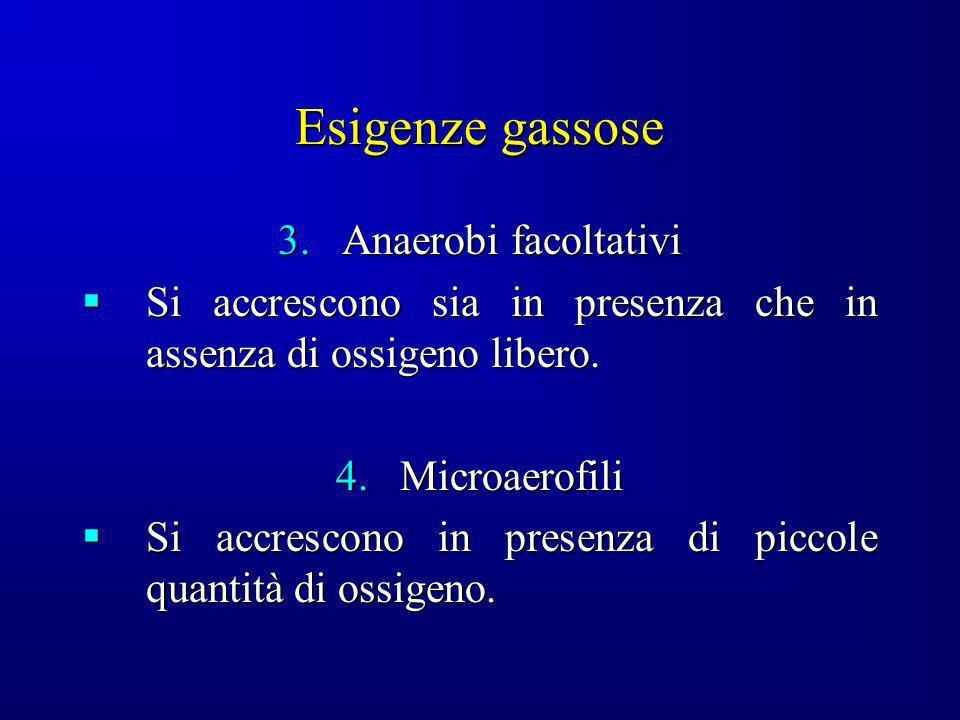 Esigenze gassose 3.Anaerobi facoltativi Si accrescono sia in presenza che in assenza di ossigeno libero. Si accrescono sia in presenza che in assenza