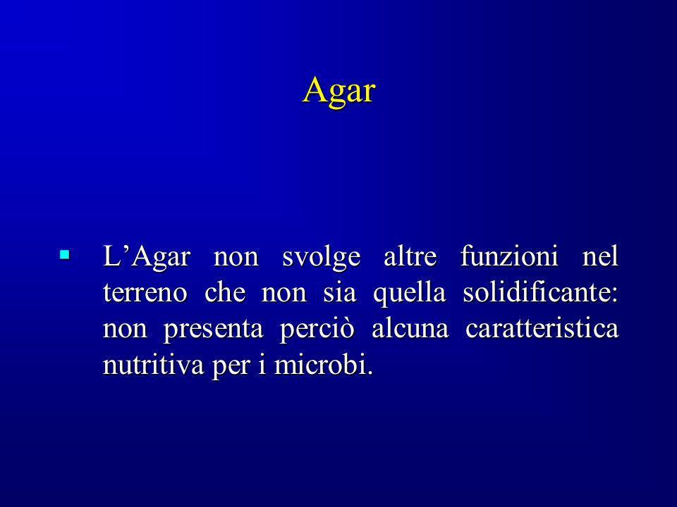 Agar LAgar non svolge altre funzioni nel terreno che non sia quella solidificante: non presenta perciò alcuna caratteristica nutritiva per i microbi.