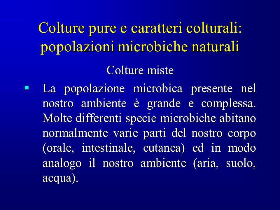 Colture pure e caratteri colturali: popolazioni microbiche naturali Colture miste La popolazione microbica presente nel nostro ambiente è grande e com